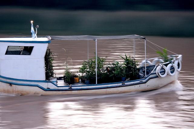 tigreboat